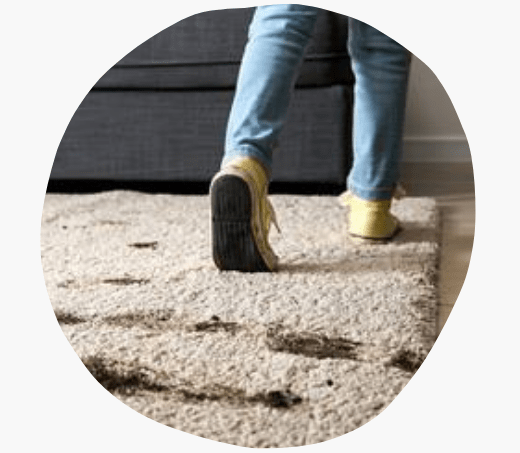 Rug Cleaning New Farm